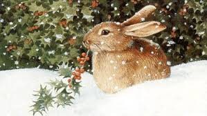 christmas-bunny-2