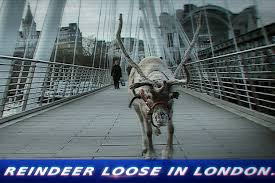 day-6-reindeer-loose-in-london